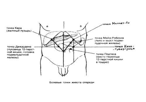 точки пальпации поджелудочной железы