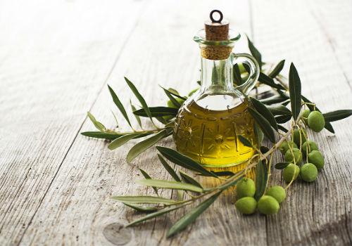 оливковое масло и ветвь оливы