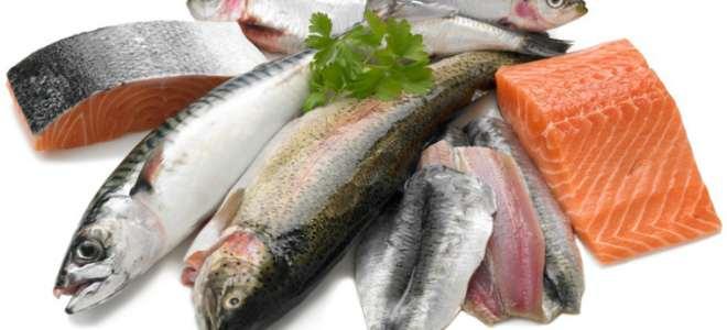 разные виды рыбы