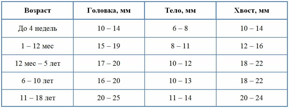 Таблица: зависимость размера поджелудочной ребёнка от возраста